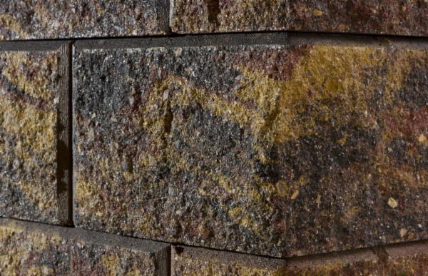 Betoninis tvoros pamūros blokelis Nojus A-1 Auksinis ruduo (D-1) Paveikslėlis 3 iš 8 239320300008