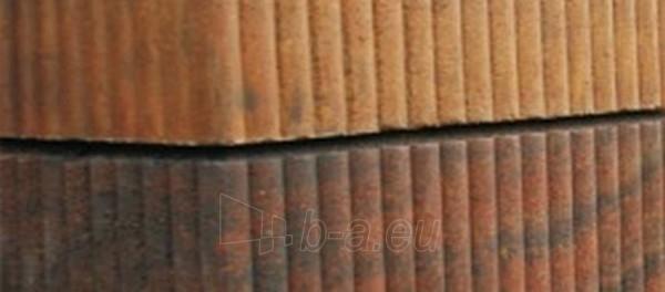 Concrete fence block Riflis C2 (Golden autumn) D1 Paveikslėlis 2 iš 3 239320300029
