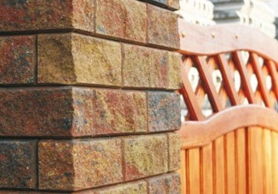 Betoninis tvoros stulpo blokelis Nojus B-2 Auksinis ruduo (D-1) Paveikslėlis 2 iš 2 239320100007