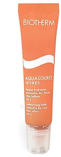 Biotherm Aquasource Levres Cosmetic 15ml Paveikslėlis 1 iš 1 2508721000032