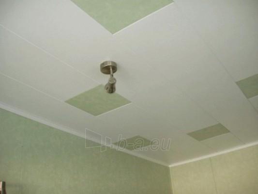 Dailylentės ECOTEX Kivi R plotis 585 mm skirtos sienoms, plačios Paveikslėlis 3 iš 6 237742000021
