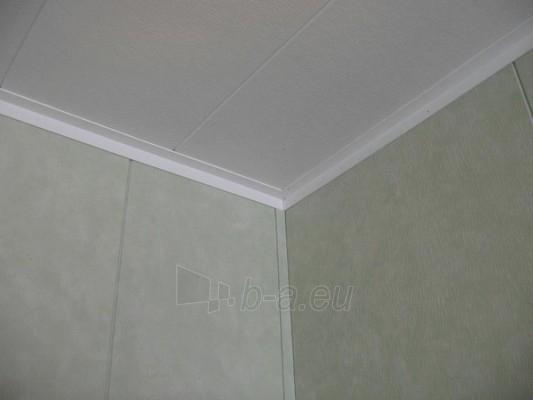 Dailylentės ECOTEX Kivi R plotis 585 mm skirtos sienoms, plačios Paveikslėlis 5 iš 6 237742000021