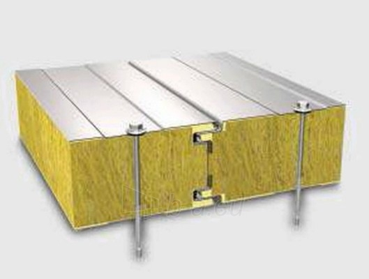 Sandwich panel for external wall 60 mm (with a core of stone wool) Paveikslėlis 1 iš 5 237190200001