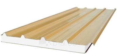Daugiasluoksnė stoginė plokštė 'Sandwich' 100 mm (polistireninio putplasčio užpildo) Paveikslėlis 1 iš 6 237190300008