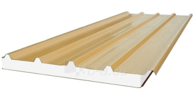 Sandwich panel for roof 120 mm (with polystyrene core) Paveikslėlis 1 iš 6 237190300009