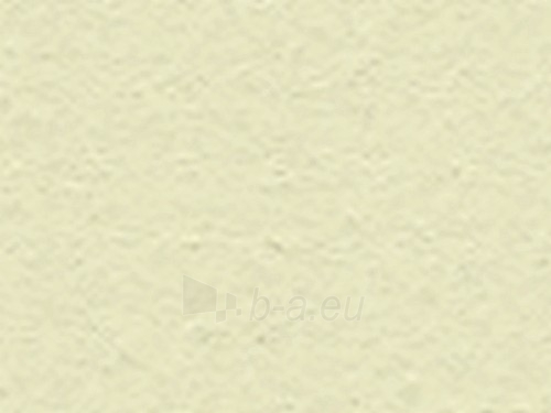 Fibre Cement Facade panel TEXTURA 2530x1280x12 mm TG 601 gray-yellow Paveikslėlis 1 iš 1 237114000043