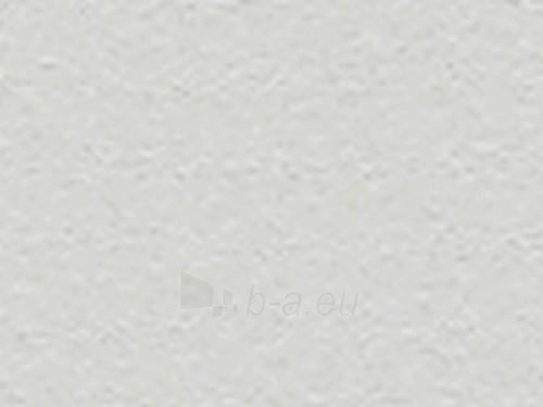 Fasadinė plokštė TEXTURA 2530x1280x8 mm TG 205 šviesiai pilka Paveikslėlis 1 iš 1 237114000061
