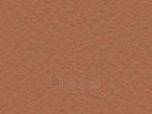 Fibre Cement Facade panel TEXTURA 3130x1280x12 mm TA 701 orange Paveikslėlis 1 iš 1 237114000076
