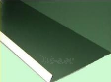 Įlaja apatinė 300x300 mm (poliesteris) spalvotas Paveikslėlis 1 iš 1 237112600040