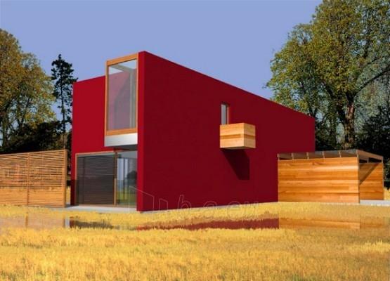 Individualaus namo projektas 'Alas' Paveikslėlis 1 iš 1 238530000010