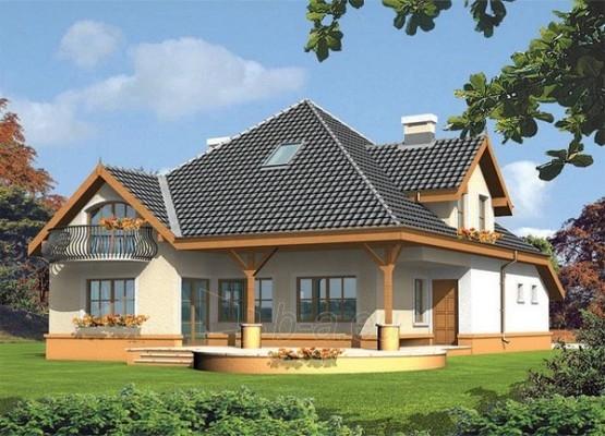Individualaus namo projektas 'Amarilė' Paveikslėlis 1 iš 1 238520000085