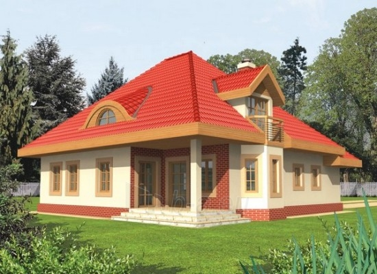 Individualaus namo projektas 'Aurelija' Paveikslėlis 1 iš 1 238520000260
