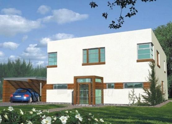 Individualaus namo projektas 'Barkus' Paveikslėlis 1 iš 1 238530000011