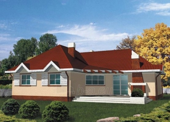 Individualaus namo projektas 'Beatričė' Paveikslėlis 1 iš 1 238510000017
