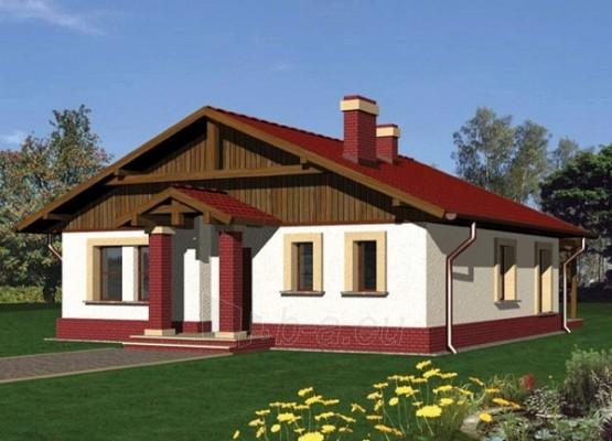Individualaus namo projektas 'Bona' Paveikslėlis 1 iš 1 238510000011