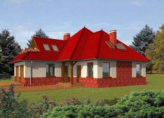 Individualaus namo projektas 'Delfina' Paveikslėlis 1 iš 1 238520000213