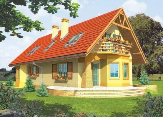 Individualaus namo projektas 'Dina' Paveikslėlis 1 iš 1 238520000238