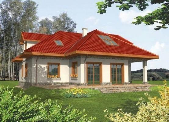 Individualaus namo projektas 'Elza' Paveikslėlis 1 iš 1 238520000192