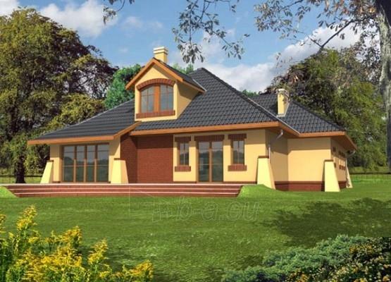 Individualaus namo projektas 'Ineza' Paveikslėlis 1 iš 1 238520000156