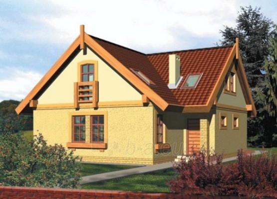 Individualaus namo projektas 'Kaja' Paveikslėlis 1 iš 1 238520000036