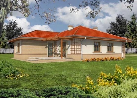 Individualaus namo projektas 'Klėja' Paveikslėlis 1 iš 1 238520000159