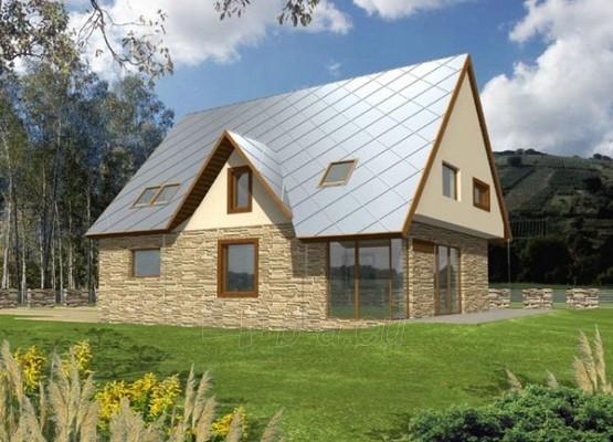 Individual house project 'Liveta' Paveikslėlis 1 iš 1 238520000161