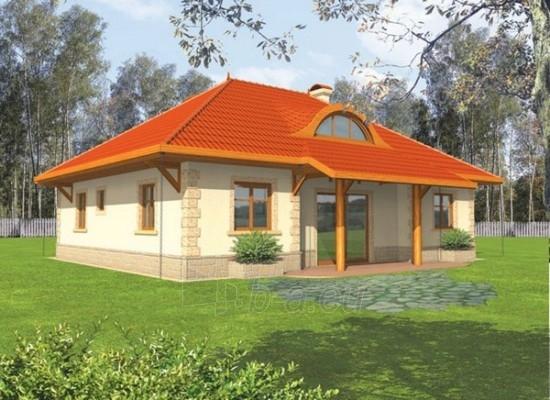 Individualaus namo projektas 'Meri I' Paveikslėlis 1 iš 1 238520000252