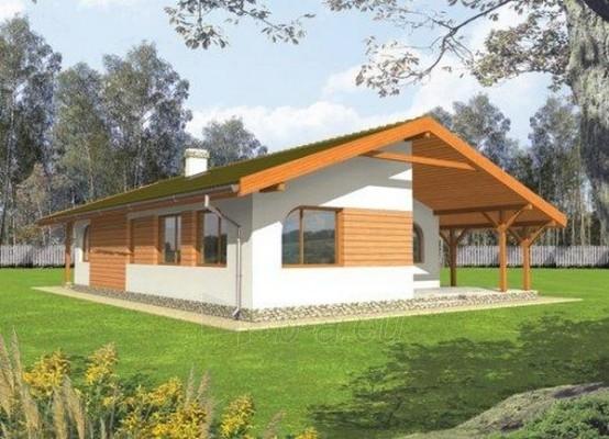 Individualaus namo projektas 'Mileta' Paveikslėlis 1 iš 1 238510000084