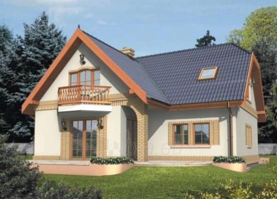 Individual house project Mirabela Paveikslėlis 1 iš 1 238520000015