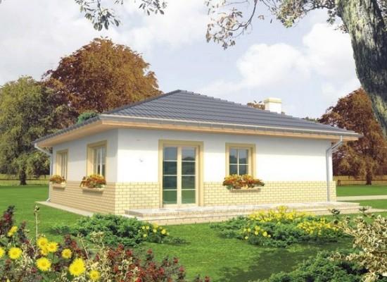 Individualaus namo projektas 'Nora' Paveikslėlis 1 iš 1 238510000097