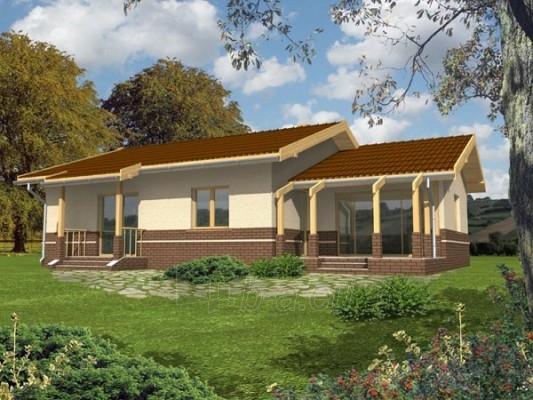 Individualaus namo projektas 'Raimonda' Paveikslėlis 1 iš 1 238510000016