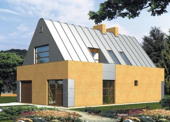 Individualaus namo projektas 'Rapolas' Paveikslėlis 1 iš 1 238530000024