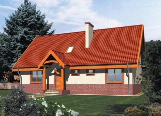 Individualaus namo projektas 'Rugilė I' Paveikslėlis 1 iš 1 238510000041