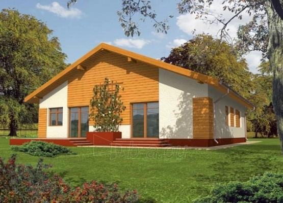 Individualaus namo projektas 'Serafina' Paveikslėlis 1 iš 1 238510000033