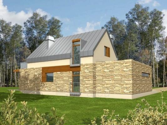 Individualaus namo projektas 'Tauras' Paveikslėlis 1 iš 1 238530000004