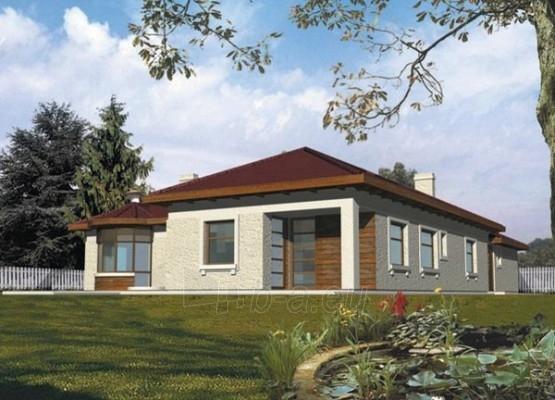 Individualaus namo projektas 'Temidė II' Paveikslėlis 1 iš 1 238520000061