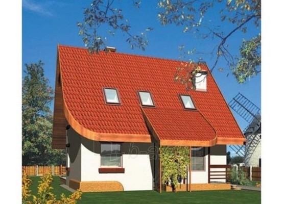 Individualaus namo projektas 'Tonis' Paveikslėlis 1 iš 1 238520000208