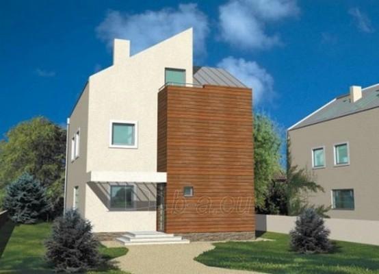 Individualaus namo projektas 'Vidas' Paveikslėlis 1 iš 1 238530000043