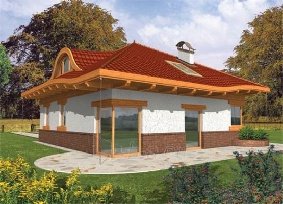 Individualaus namo projektas 'Zosė' Paveikslėlis 1 iš 1 238520000141