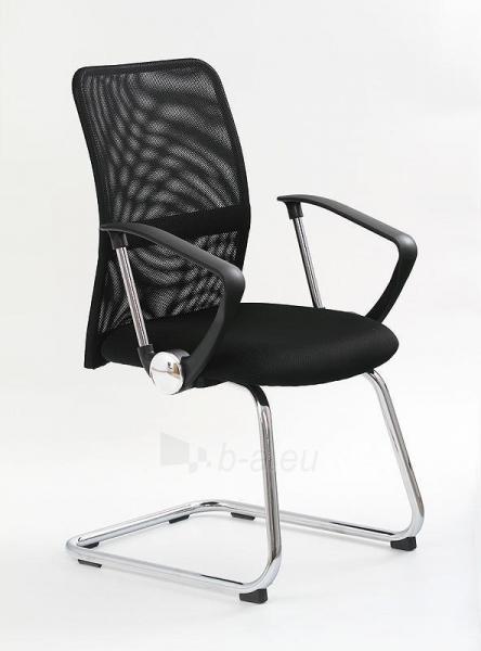 Kėdė VIRE SKID Paveikslėlis 1 iš 1 250462100039