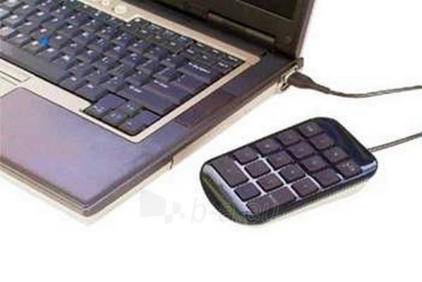 Klaviatūra TARGUS NUMBER PAD Paveikslėlis 1 iš 1 250255700104