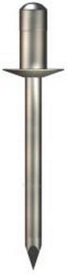 Kniedė 4.8x8 aliuminė-metalinė (kombinuota) Paveikslėlis 1 iš 1 236153000010