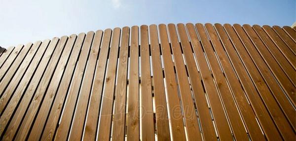 Medienos apsaugos priemonė Wood Guard Iron Tree 3 ltr Paveikslėlis 2 iš 2 236860000258