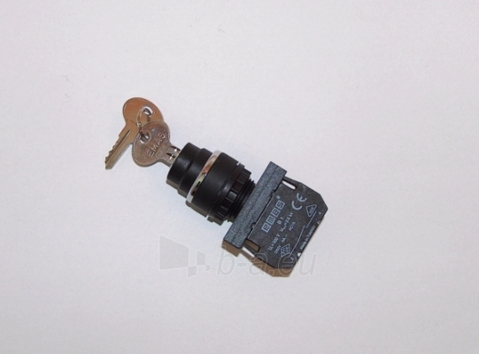 Mygtukas/jungiklis 0-1,užrak.B100A21 empaz Paveikslėlis 1 iš 1 222993000138