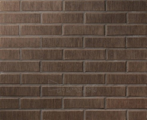 Perforated facing bricks Asais Brunis 11.203700L Paveikslėlis 2 iš 2 237610200084
