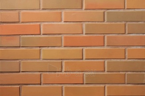 Perforated facing bricks Rudite 11.131700L Paveikslėlis 2 iš 2 237610200079