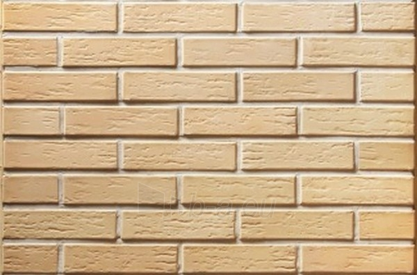 Perforated facing bricks Veca Sarmite 11.312100L Paveikslėlis 2 iš 2 237610200076