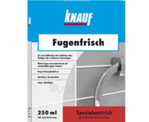 Plytelių siūlių atnaujintojas Fugenfrisch sidabrinis 250ml Paveikslėlis 1 iš 1 236640000039