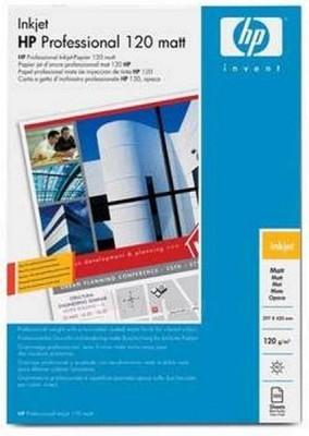 Popierius PROFESSIONAL INKJET PAPER MATT A/100 Paveikslėlis 1 iš 1 250256010108