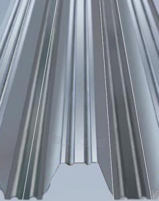 Profiliuotas plieno lakštas LP120 1,1 mm Paveikslėlis 1 iš 3 237180000006
